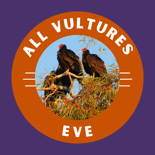 All Vultures